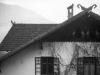44_Schenna_Pferdekoepfe_Sonnwendhof_Wohnhaus_AS-Albumphoto_043