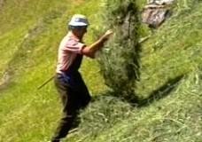 Vita e Agricultura in Pendio