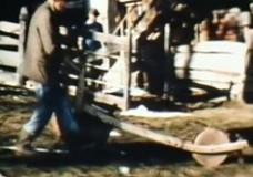 PFLÜGEN – EGGEN – SÄEN : FELDBESTELLUNG IN FLAAS – JENESIEN 1979